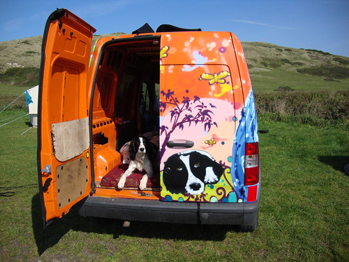 Dog in Van