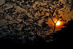 Sunset (jain_sambhav2003) Tags: sun set nikon vizag d60