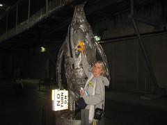 Big Silver Bird