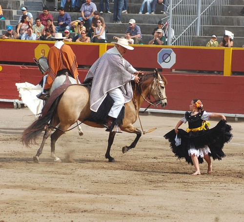 Veterano chalán y caballo de paso bailan marinera con niña
