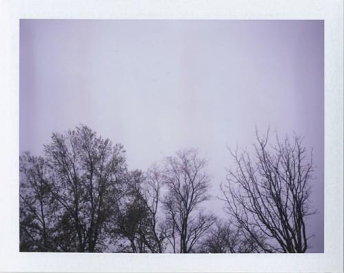 Greyness