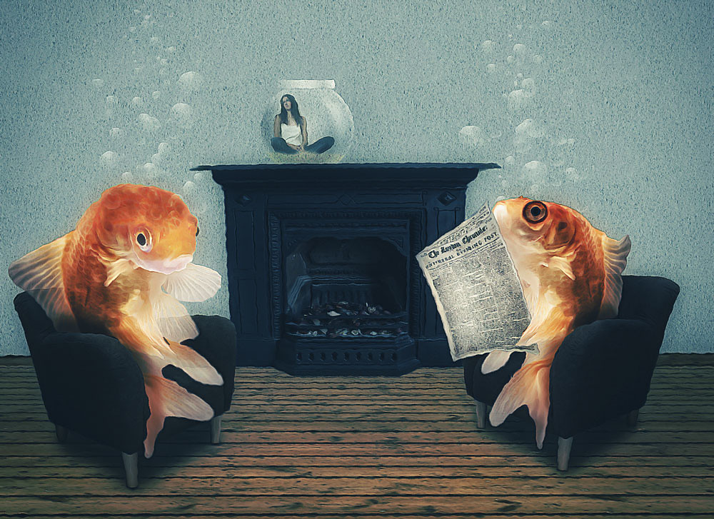 The World's Best Photos of goldfish and surreal - Flickr Hive Mind