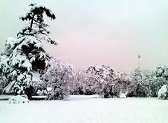 Marseille-en-Laponie (Marc DUPUY) Tags: france marseille neige arbre marseilles prenol laponie sainttronc
