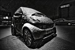 Snow in Brighton | Smart, Bad Smart (by Yury Trofimov)