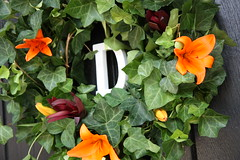 the groom's innitial (tulipefloralartistry) Tags: churchdoor weddingdecor ivywreath