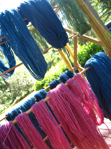 dyeing day 140