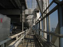 on the Rainbow Bridge (OhBrad) Tags: japan tokyo odaiba
