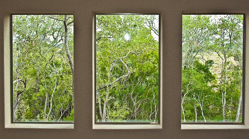 Three Views of a Secret -66/365 - 12 August 2009