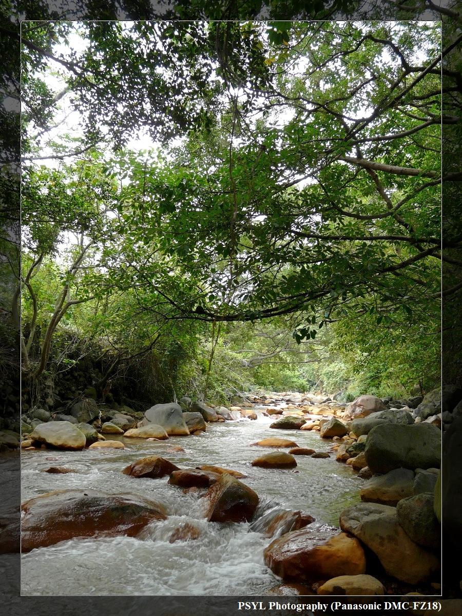 Gentle Yellow River