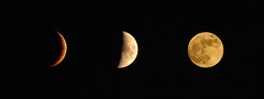 The three moons summer (Cap-ferret, France in august - Bordeaux, France in august - Grand Canyon Arizona in July) (esyckr) Tags: moon fullmoon sturgeonmoon buckmoon grainmoon greencornmoon haymoon
