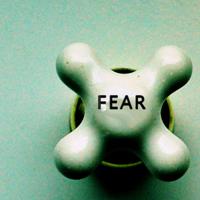 fear copy