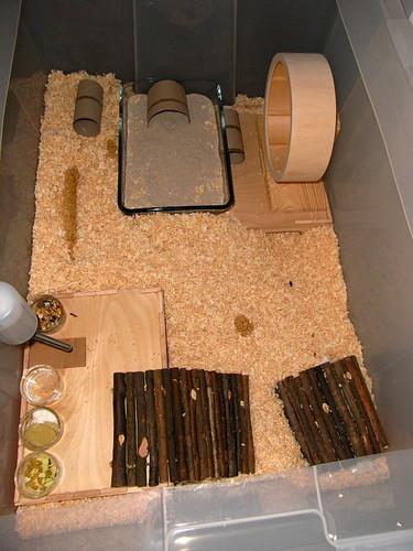 Hamster Gehege / Cage