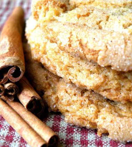 Recipe: Big, Old-Fashioned Snickerdoodles blog image 1