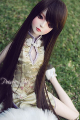 Eileen - DOT Shall (-Poison Girl-) Tags: black green rose garden ginger eyes doll coat dot redhead sd bjd brunette poison dollfie superdollfie rowan eileen mayfair poisongirl shall fer qipao chinesedress dreamofdoll balljointeddoll ashlar lahoo dotshall dotlahoo blackfer dodshall rowanmayfair dodlahoo