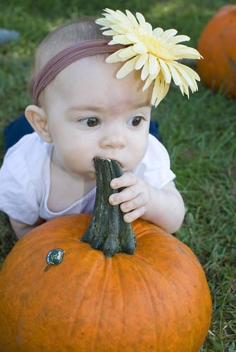 Pumpkin119