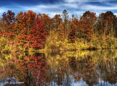 lake ontelaunee (JustinS*) Tags: autumn trees lake reflection fall nature water colors landscapes nikon pa hdr d90 ontelaunee platinumheartaward