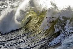 cold water classic (astrocruzan) Tags: california santacruz surfer surfing 2009 steamerlane oneil coldwaterclassic