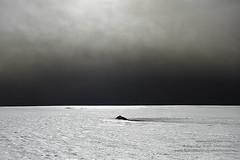067 Grimsvotn shs_n3_072300 (Stefnisson) Tags: de island volcano iceland islandia glacier ash volcanic eruption gos ísland vulcano vatnajokull islande aska plume volcan vulkan vulkaan volcán islanda vatnajökull icecap ijsland eldgos grimsvotn ashfall ashplume grímsvötn volacnic gosmökkur öskuský gjóska mökkur stefnisson 火山アイスランド