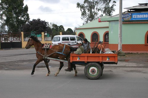 Horse-cart in Ipiales - Colombia.