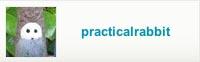 practicalrabbit.etsy.com