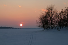 Sunset Ski (deanspic) Tags: winter sunset mist ski path tracks shore nordic xcountry skitracks stlawrenceriver nordicski warmfront parksofthestlawrence hoopleisland xcounrtyski