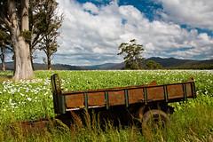 Tasmania-4200