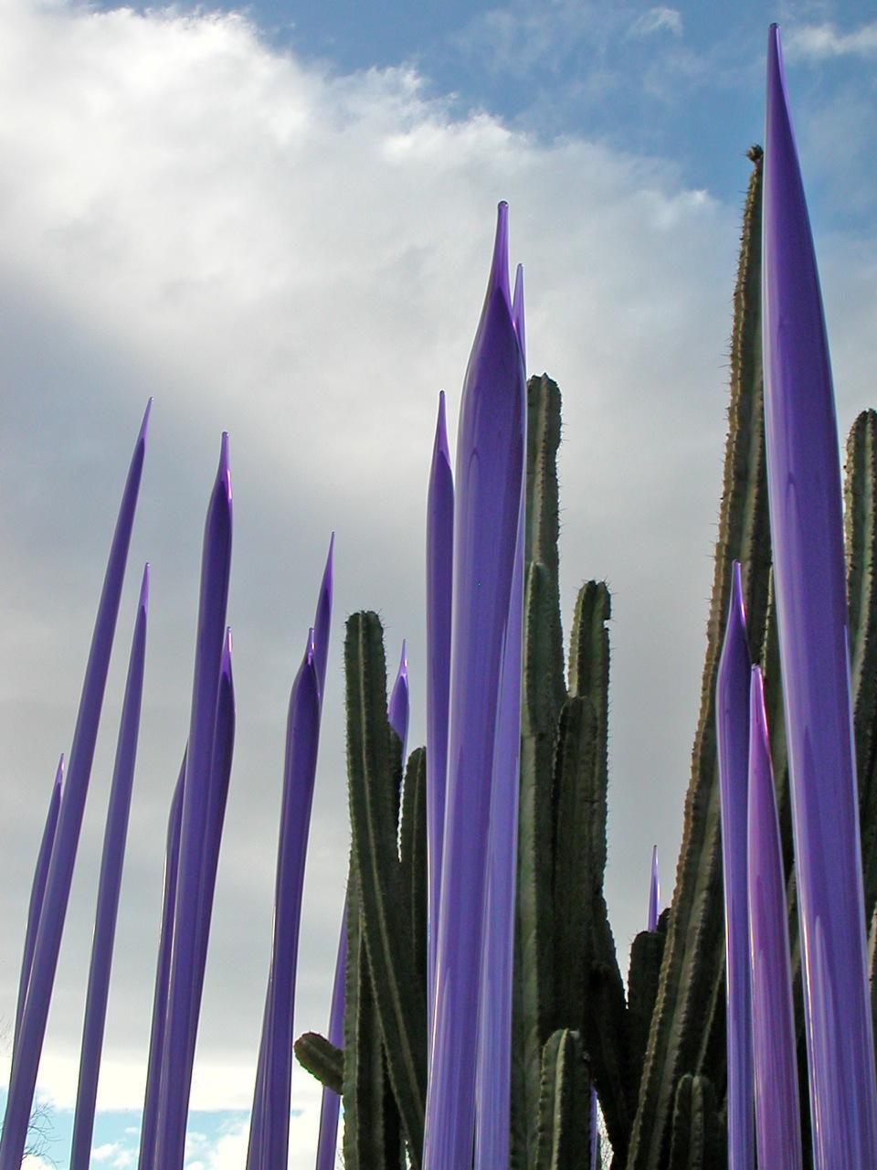 Chihuly Glass, Desert Botanical Gardens, Phoenix