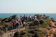 Tourists! (fox2mike) Tags: australia melbourne victoria greatoceanroad twelveapostles 12apostles apostles