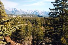 Banff Area (041A) (Spike1940) Tags: canada alberta banff lakelouise banffspringshotel peytolake morainelake johnsonscanyon