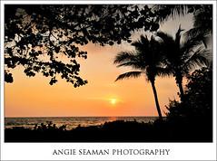 BEACH DREAMS (Florida)