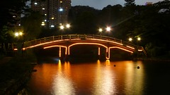 Zhuhai - Bridge in a park (cnmark) Tags: china park bridge light reflection night geotagged noche long exposure nacht explore guangdong noite  nuit notte zhuhai nachtaufnahme    explored allrightsreserved jida platinumheartaward lumixaward thesuperbmasterpiece holidayresorthotel  geo:lat=22241433 geo:lon=113576338 mygearandmepremium mygearandmebronze mygearandmesilver mygearandmegold
