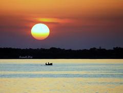 ... a domani ! (FranK.Dip) Tags: desktop sunset wallpaper costa barca tramonto mare cielo sole salento puglia cartolina brindisi orizzonte sfondo sfondi pescatori dip2 frankdip 07212009