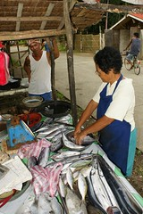 Fish seller at Macrohon, Southern Leyte, Philippines (David B. - just passed the 5 million views. Thanks) Tags: street woman fish town village sony femme philippines rue poisson ville visayas 1870 vallée leyte a700 southernleyte teampilipinas macrohon sonydt1870 sonyalpha700 lpcustomer
