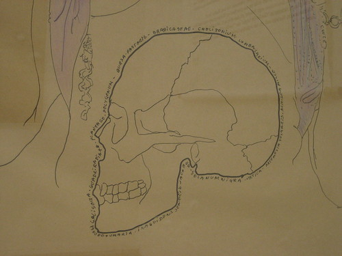 skull in a drawing by Jef Geys, representing the Belgian pavilion