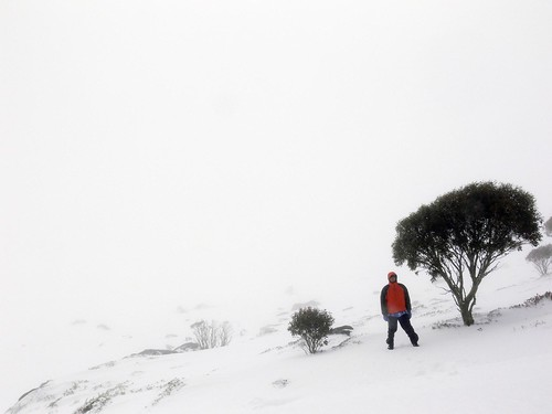 Neerav Bhatt standing in Isolated Part of Charlotte Pass After Snowstorm