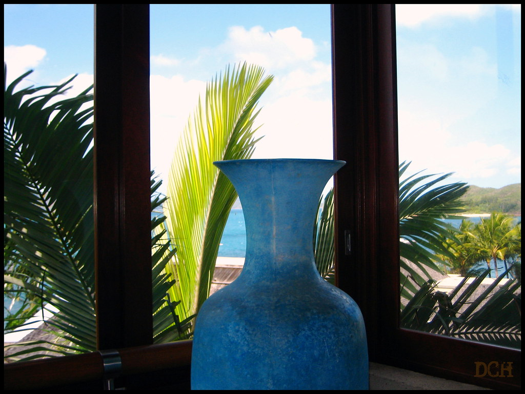 A Vase With A View