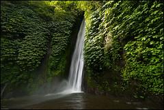 Fall Shower (Souvik_Prometure) Tags: bali indonesia gitgit sigma1020mm gitgitwaterfall munduk nikond80 buleleng mundukwaterfall souvikbhattacharya