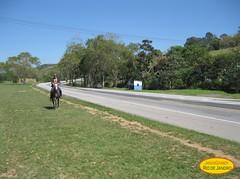 Viajante (Janos Graber) Tags: azul cu estrada asfalto homem cavalo rvores vassouras gramado montaria vassourasrj