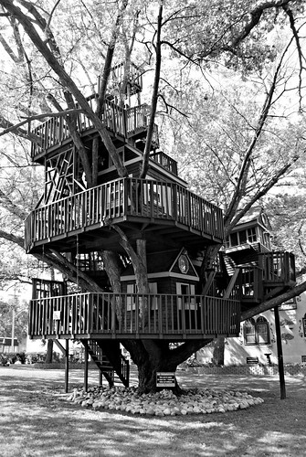 Treehouse - 1