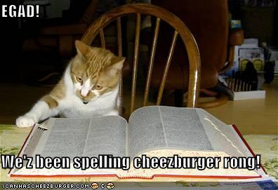 funny-pictures-cat-dictionary-cheezburger