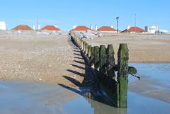 DSC_0013 (actaeon1805) Tags: beach worthing groyne
