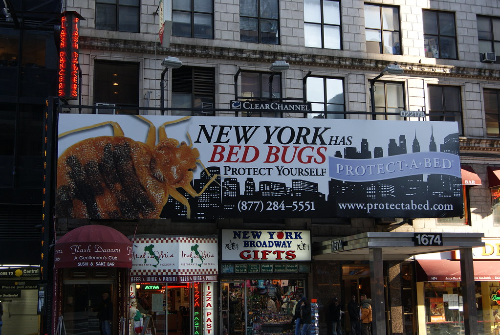 Bed Bugs!!