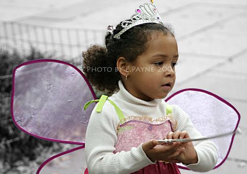 Fairy-Princess