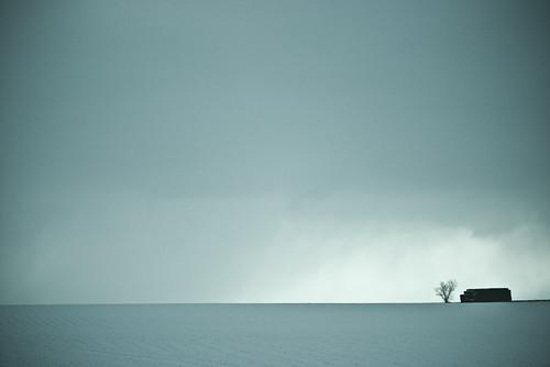 Nieve (Snow) fotografia profissional cores fortes minimalista  deixa de frescura