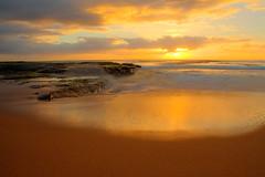 turimetta beach narrabeen sydney nsw australia (Pavel Sigarteu) Tags: beach sydney australia nsw narrabeen turimetta