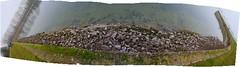 IMG_6259-PAN (christophemurphy) Tags: rocks bank reservoir tring