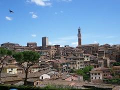 Siena, Italy (mirandajean) Tags: italy siena lptowers