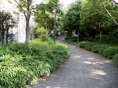 水神社の小径、水路跡か。