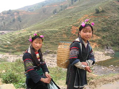 Hilltribe Girls, Sapa, Vietnam (travel_bug_bit) Tags: flowers girls black children rice traditional vietnam sapa hmong paddies hilltribe