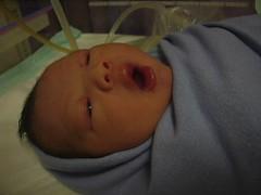 Yawn (Joe Ang) Tags: warmer deliveryward